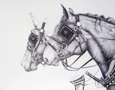 """Draft Horses in Ink"" Graphite mechanical pencil for the sketch, Faber-Castell PITT artist pen black fineliner and super fine to draw."