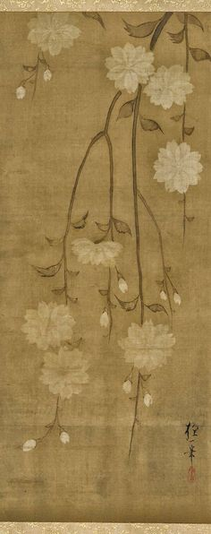 Sakai Hoitsu - Drooping cherry branches in blossom. Hanging scroll (mounted on panel). Attributed to Sakai Hōitsu 酒井抱一 (1761-1828). Edo period, mid 18th-early 19th century. Ink, color, and gold on silk