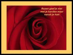 Afbeeldingsresultaat voor rozen spreuken