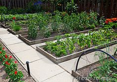 love the idea of hardscaping between the beds instead of mulch