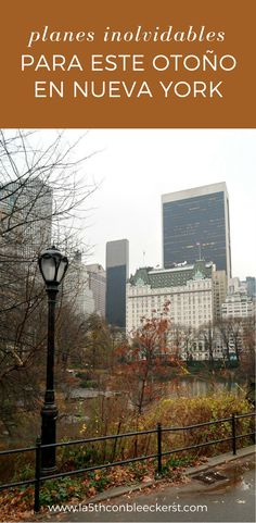 10 cosas a hacer este otoño en Nueva York y que te van a encantar.