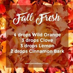 Fall Fresh Diffuser Blend & Fall Essential Oil Diffuser Blend & Wild Orange, Clove, Lemon and Cinnamon essential oils