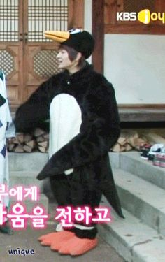 """Onew (SHINee) dressed like a penguin/swallow in """"SHINee's Hello Baby"""" episode 7.  They were doing """"Rich Man, Poor Man"""" & for some reason (I suspect Onew's suggestion) decided that the narrator should be dressed like a penguin/swallow.  (.gif)."""