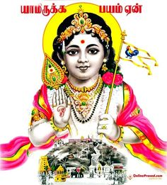 20 Lord Murugan Adbhut HD Pictures and Wallpapers Baby Images, Children Images, Hd Images, 1080p Wallpaper, Photo Wallpaper, Flower Wallpaper, Iphone Wallpapers, Lord Murugan Wallpapers, Lord Shiva Family