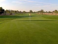 www.golfwildhorse.com #10 green looking back toward clubhouse