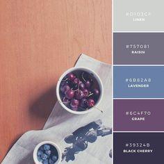 16. Afternoon Delights  通常、冷たい印象を与える青色に、温かみのある色使いを組み合わせた(LinenとRaisin)、なごんだ雰囲気の配色。インテリアや家具ブランドなど、モダンなイメージを印象するときに。