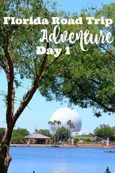 #travel Ultimate Florida Family Road Trip Guide Day 1