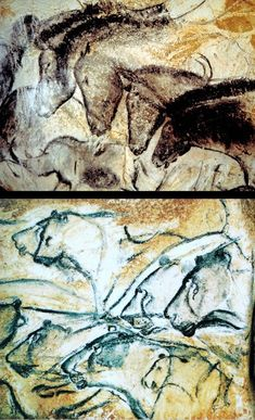 Chauvet Cave Drawings (c. BC) Horses, rhinos, and lions are just a few of the wild animals depicted at Chauvet. Experts believe that the cave drawings may have served to initiate young males into hunting by showing them what game they might encounter. Ancient Art, Ancient History, Chauvet Cave, John Berger, Cave Drawings, True Art, Aboriginal Art, Art Challenge, Change The World
