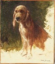 Rosa Bonheur, Study of a Dog, possibly 1860s, Princeton University Art Museum