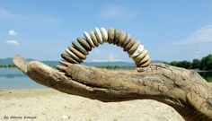 Driftwood hand and stone arch in hungary by tamas kanya