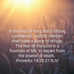 In the fear of the Lord is strong confidence: and his children shall have a place of refuge. 27 The fear of the Lord is a fountain of life, to depart from the snares of death. Bible Verses About Fear, Scripture Of The Day, Scripture Verses, Bible Quotes, Bible Scriptures, Proverbs 26, Worship God, The Deed, My Salvation
