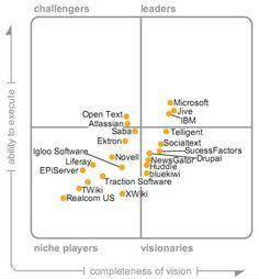 Internal Social Software 2009