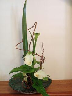 Rising Form/ New Zealand Flax, Calla Lily, Kiwi Vine