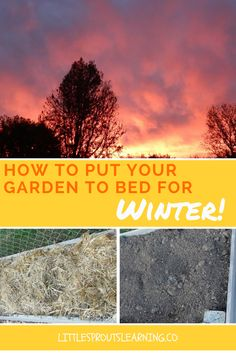 At Little Sprouts we are putting some of our gardens to bed for the winter. Why…