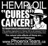 rick simpson, phoenix tears, hemp oil, cancer cure