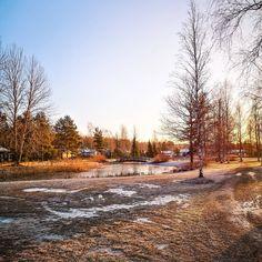 """""""Как сказать по-фински """"Я тебя люблю?""""💗 Country Roads"""