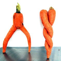 the bowlegged cowboy and the conjoined twins O Cowboy, Art Beauté, Strange Fruit, Carrots, Vegetables, Conjoined Twins, Dancing, Food, Interesting Stuff