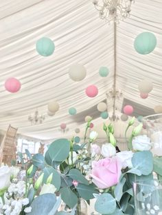 Wedding Marquee Decor 40 cream, soft pink, robin egg paper lanterns Wedding Lanterns, Marquee Wedding, Paper Lanterns, Big Day, Robin, Egg, Wedding Ideas, Photo And Video
