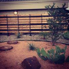 Very cool fence idea. Several stained boards   breaks up the monotony of a long fence line.