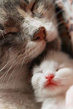 She loves her sweet baby..