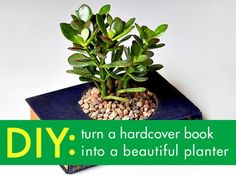 Book planter, hardcover book planter, planter book, DIY book garden planter