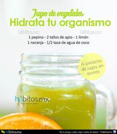 Hábitos Health Coaching   JUGO DE VEGETALES HIDRATA TU ORGANISMO