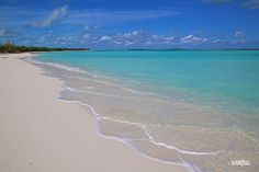 Image result for fyre festival Fyre Festival, Turquoise Water, Beach, Image, Outdoor, Outdoors, The Beach, Beaches, Outdoor Games