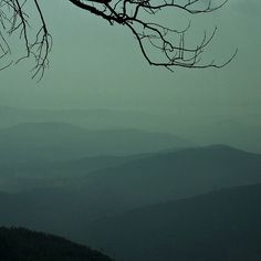 Subtle mountains in the fog. This was taken the first day driving the Blue Ridge Mountain trail. Mountains At Night, Nc Mountains, North Carolina Mountains, Blue Ridge Mountains, Cool Pictures, Cool Photos, Blue Ridge Parkway, Beautiful Sites, Oh The Places You'll Go
