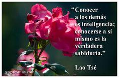 Conocer a los demás es inteligencia; conocerse a sí mismo es la verdadera sabiduría. Lao Tsé