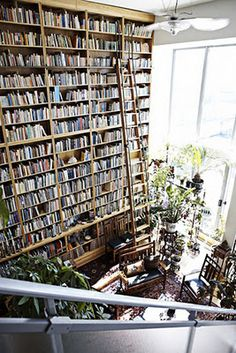 2 story bookcase with ladder