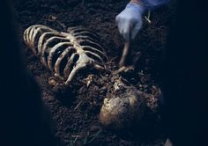 """RT - """"I'm not a doctor, I'm a forensic anthropologist."""" """"So...bones?"""" """"Bones, mostly, yes."""""""
