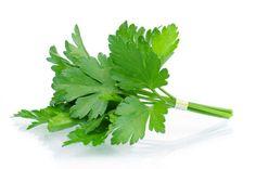 5 hierbas para cocinar que puedes cultivar en casa - El Gran Chef
