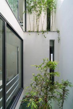 Galería de Una Casa en los Árboles / Nguyen Khac Phuoc Architects - 10