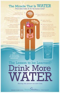 Water is more important for your body's survival than food. You can live without water for approximately one week, but you can survive without food for more than a month. Lack of water also contributes to slow hair growth, hypertension, diabetes, kidney stones and an overworked heart. Drink your water!