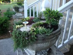 Ann's Miniature Garden - notice the tiny bird in the bird-bath!