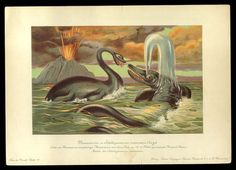 Plesiosaurus and Ichthyosaurus - Early Prehistoric Animal and Dinosaur Pictures