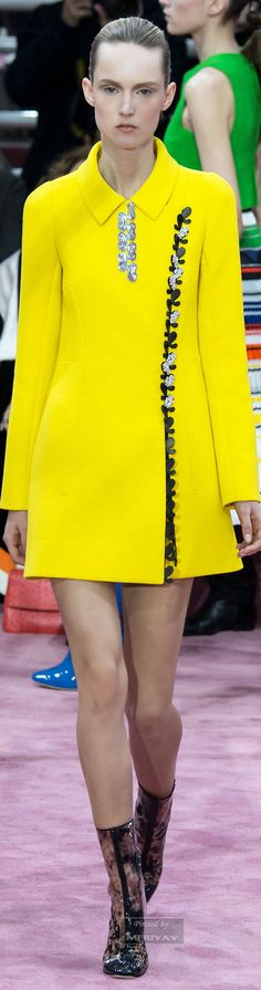 Christian Dior.Spring 2015 Couture.