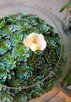 World famous florist Nicolai Bergmann                                                                                                                                                     More
