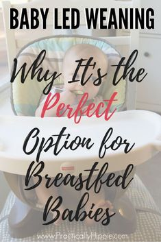 Baby Led Weaning: The perfect option for breasted babies