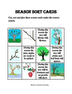Seasonal Changes in Animals | Change, Spanish lessons and Teaching ...