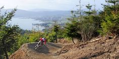 rostrevor-bikes  #mtb #cross #nature #crosscountry #mountainbike #race #cycling #bike #biking