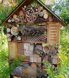 Das Insektenhotel: Naturschutz erleben Bauanleitungen Tierporträts
