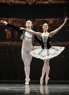 Anastasia and Denis Matvienko, Grand Pas from Don Quixote, Mariinsky Ballet at Dance Open Ballet Festival, November 2013, Vilnius, Lithuania