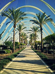 'L umbracle - club Mya - Valencia - Spain Sidewalk, Around The Worlds, Vacation, Photo And Video, Architecture, Pictures, Photography, Travel, Instagram