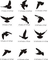 Image result for birds flying silhouette