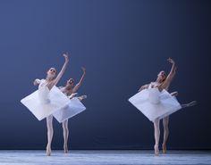 complexae: Dutch National Ballet by ph. Angela Sterlin