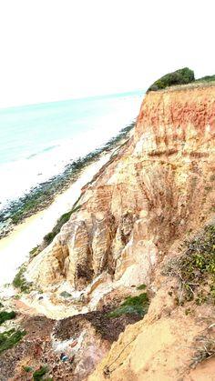 Jequiá da praia.