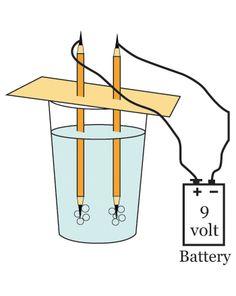 Science Fair: Water Electrolysis