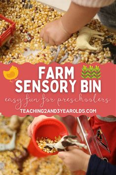This farm sensory bin is super easy to put together, and preschoolers love it! Fine motor skills are strengthened as corn kernels are transferred. #farm #sensory #sensorybin #finemotor #animals #preschool #3yearolds #teaching2and3yearolds Fall Activities For Toddlers, Farm Activities, Farm Sensory Bin, Sensory Bins, Farm Songs, Farm Paintings, Toddler Preschool, Fine Motor Skills