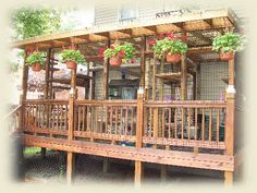 Sally's Cat House - An outdoor enclosure for rescued cats